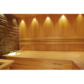 SAUNA LED LIGHT MOON W/O-Lens gold